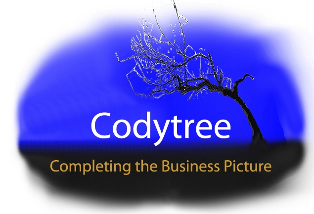 Codytree  Consulting                                                              Consulting