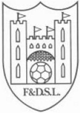 FARNHAM & DISTRICT SUNDAY FOOTBALL LEAGUE